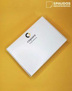 Dėžutės su logo