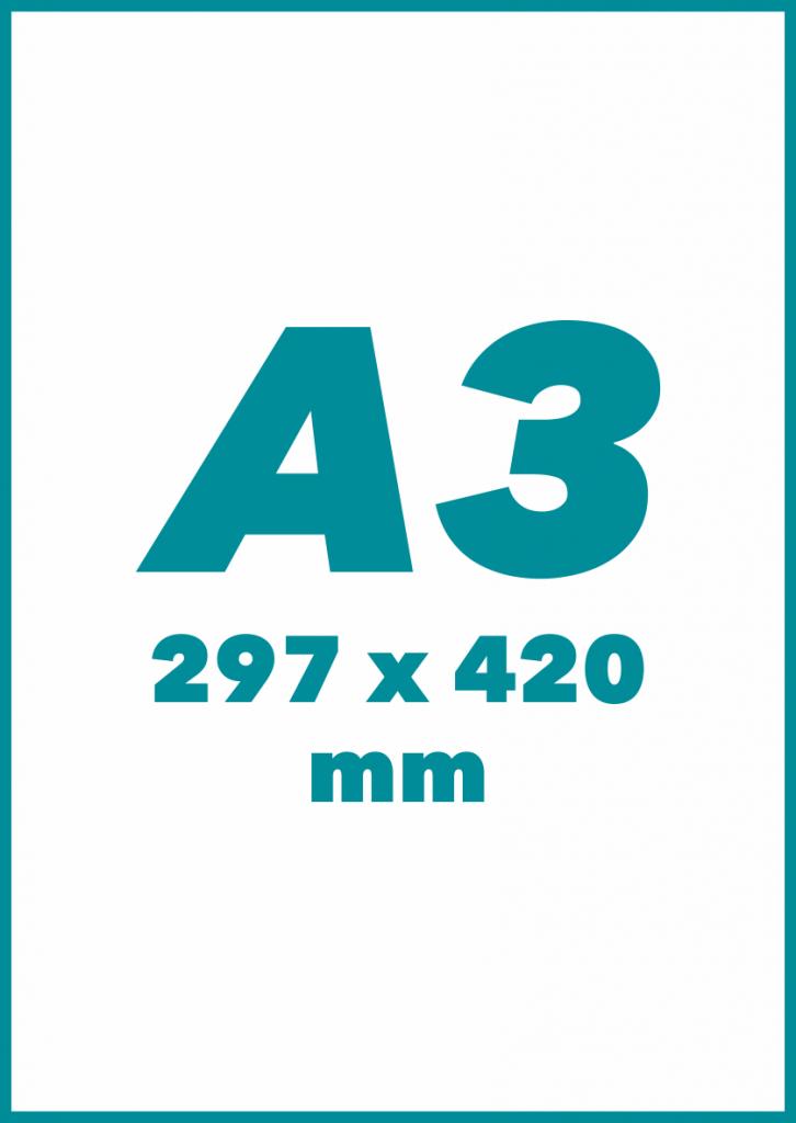 A3 Formatas