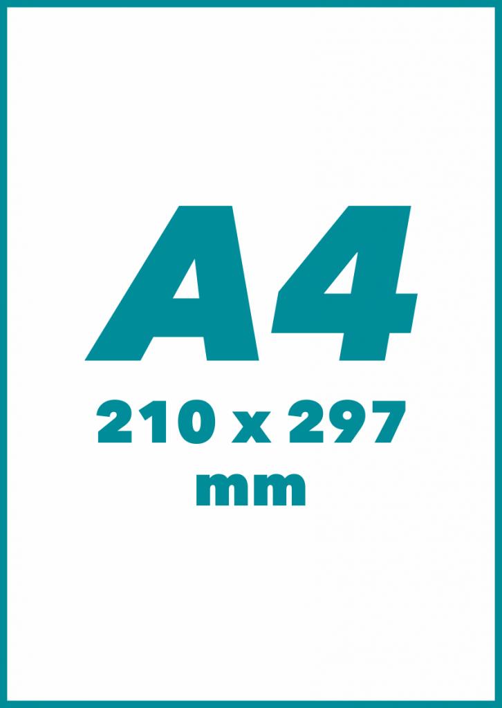 A4 Formatas