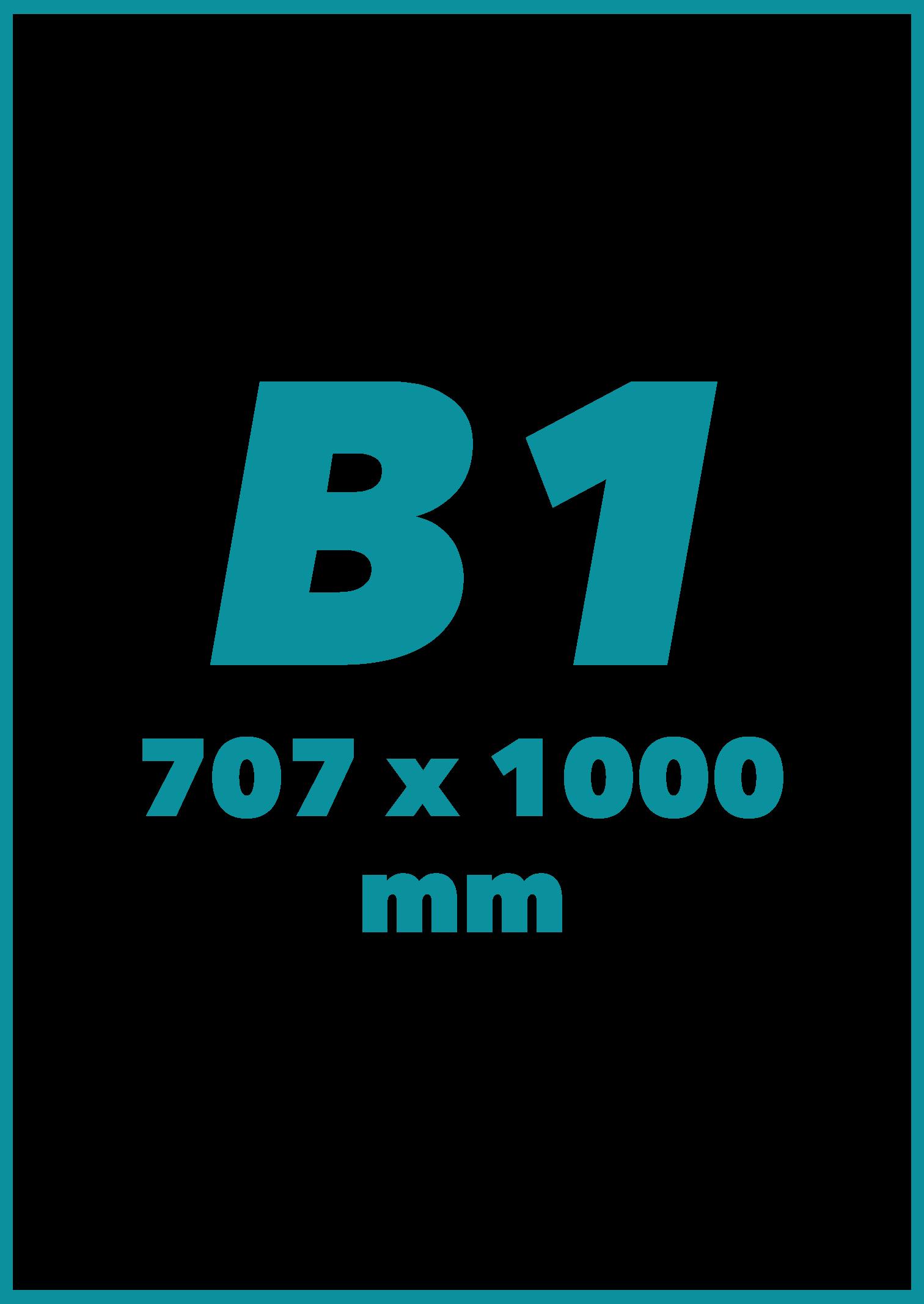 B1 Formatas