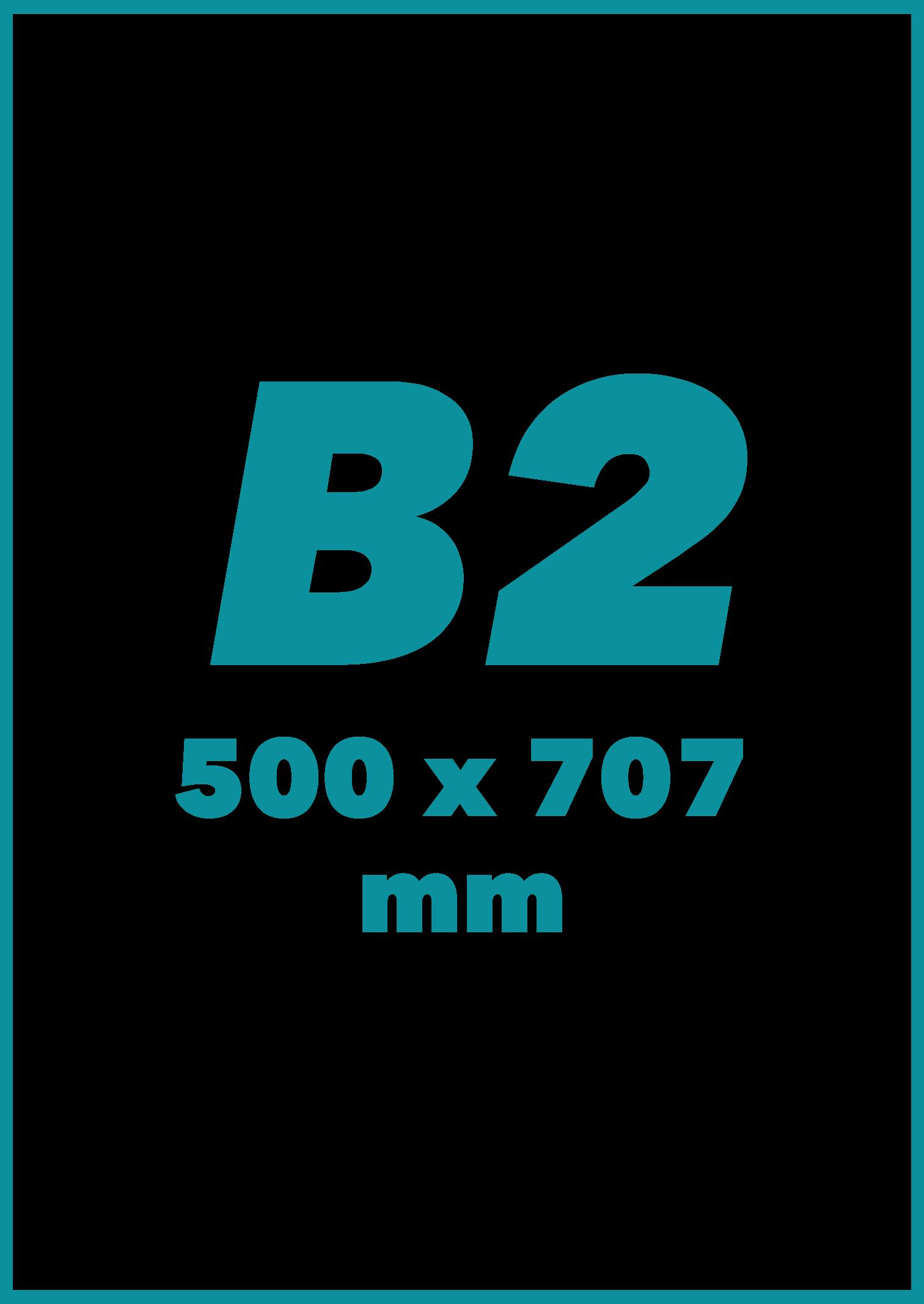 B2 Formatas