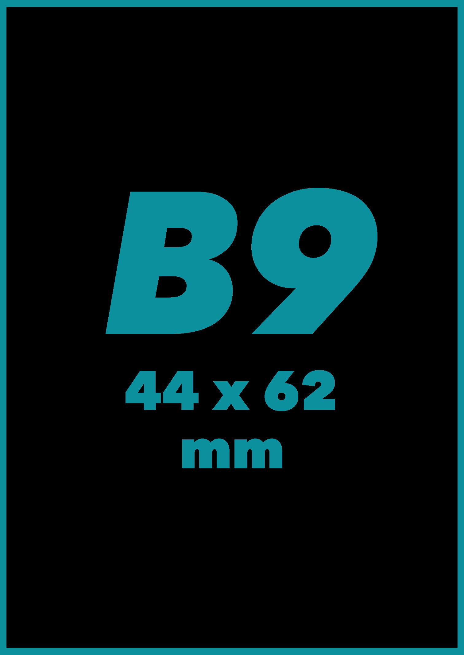 B9 Formatas