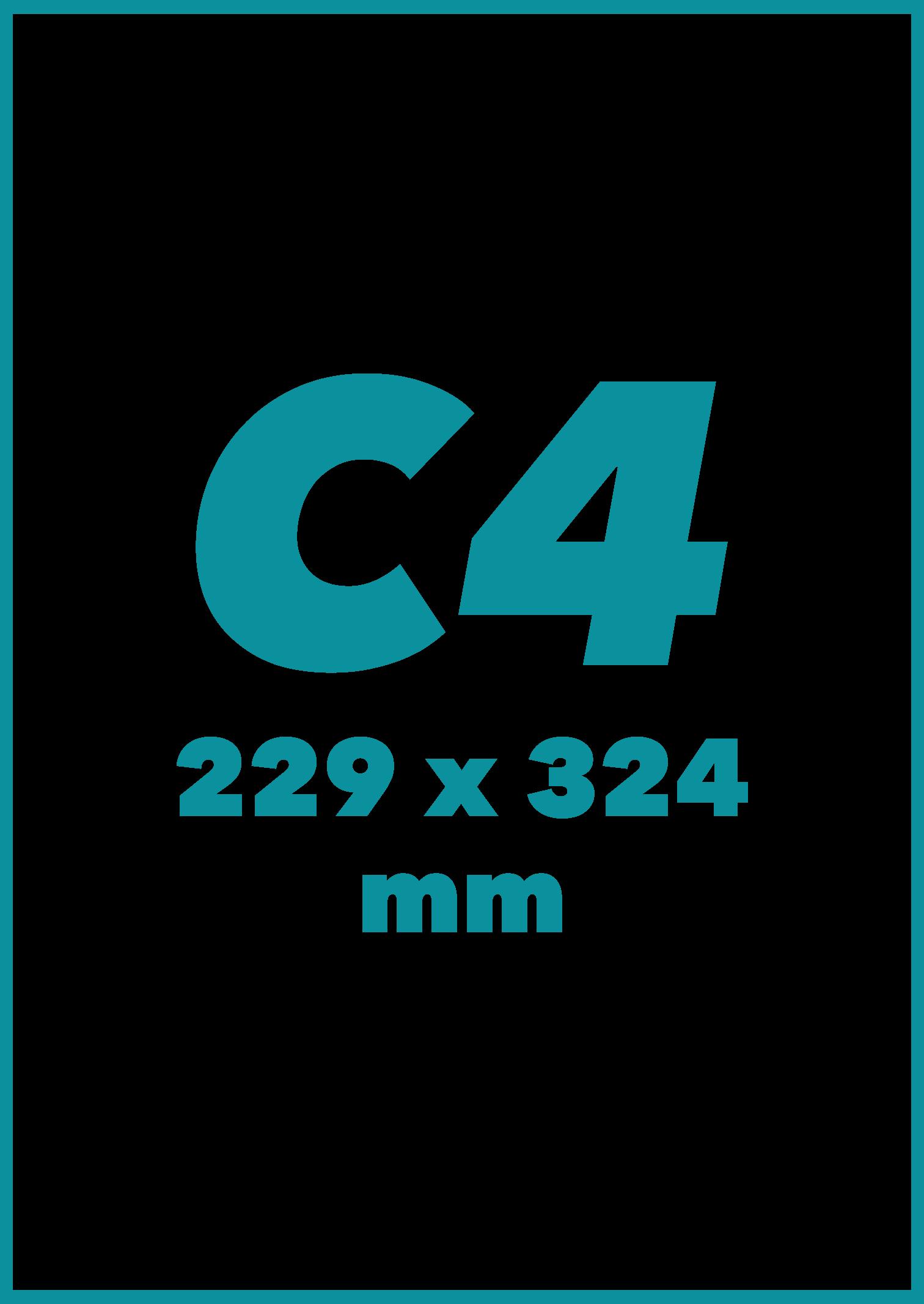 C4 Formatas