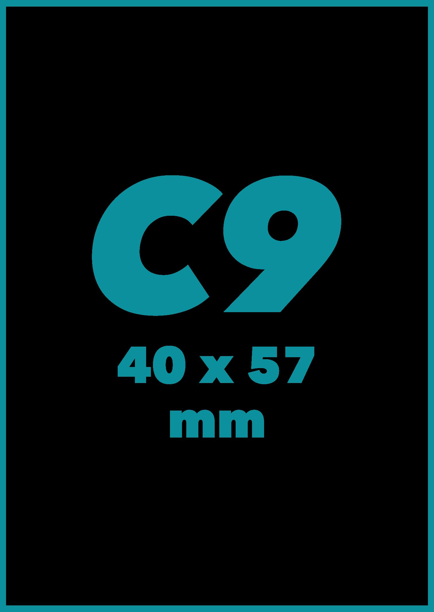 C9 Formatas